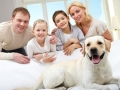 Tampa Animal Hospital | Oak Tree Animal Hospital Tampa FL Family-Dog