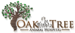 Oak Tree Animal Hospital in Tampa FL 33604